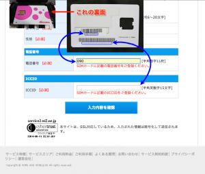 Wi2 300 ビックカメラオリジナルプラン-手順3