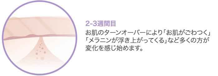 『フラクショナルレーザー』2-3週間目