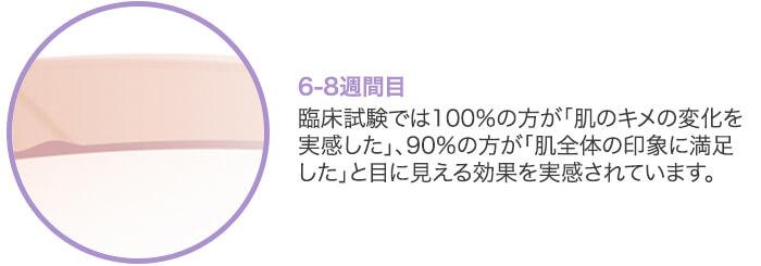 『フラクショナルレーザー』6-8週間目